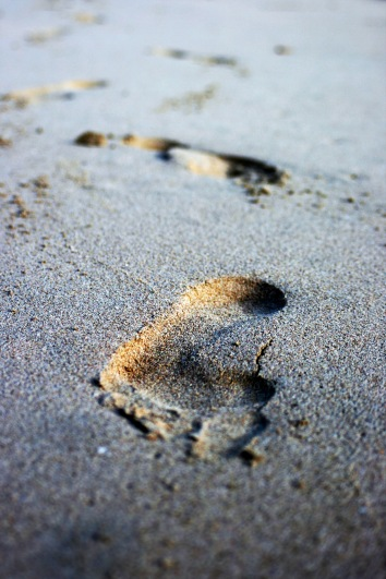 traces-in-the-sand